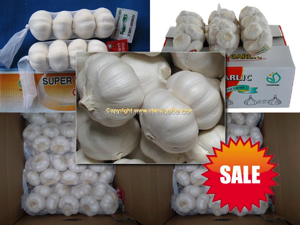 China fresh vegetable /fresh natural white Garlic