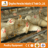 Heracles trade assurance layer chicken cage-- 3 layers chicken poultry farm equipment