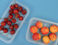 food grade plastic container fresh fruit packaging tray