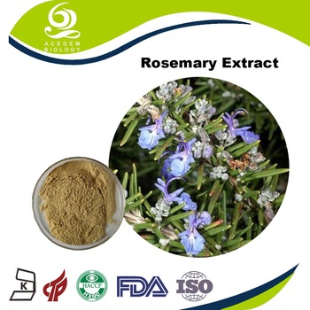 China Supplier Dried Rosemary Herb Extract Export Price