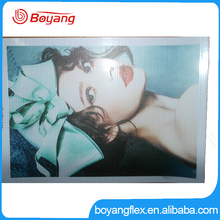550gsm Advertising Solvent Digital Printing Pvc Flex Banner