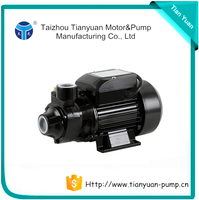 High performance Small Electric Vortex Water Pumps
