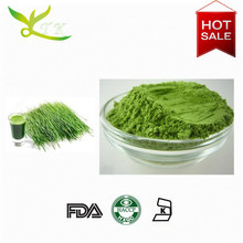supply powder benefits of wheat grass juice