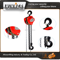 Customized 5 ton air chain hoist