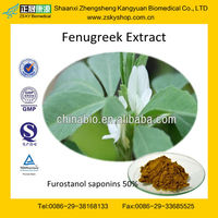 GMP manufacturer supply 100% Pure Fenugreek seed Extract powder