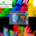 Polyurethane powder coating manufacturer