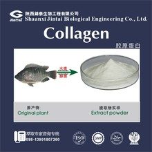 100% Pure Fresh Fish Extract Collagen Powder
