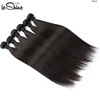 Leshine Hair Factory Overnight Shipping Double Weft Vietnam Hair