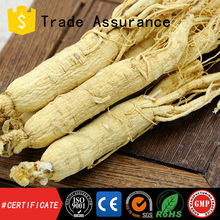 High quality ginseng essential oil 80% ginsenside
