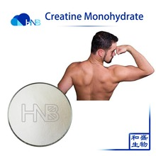 GMP Factory Supply High Quality increase strength muscles Creatine Monohydrate with best price CAS No.:6020-87-7
