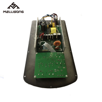 Digital Active Speaker Amplifier Module With