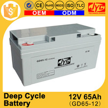 Spot Promotion Price Solar Energy Storage and Solar Lighting AGM Deep Cycle Battery 12V 65Ah
