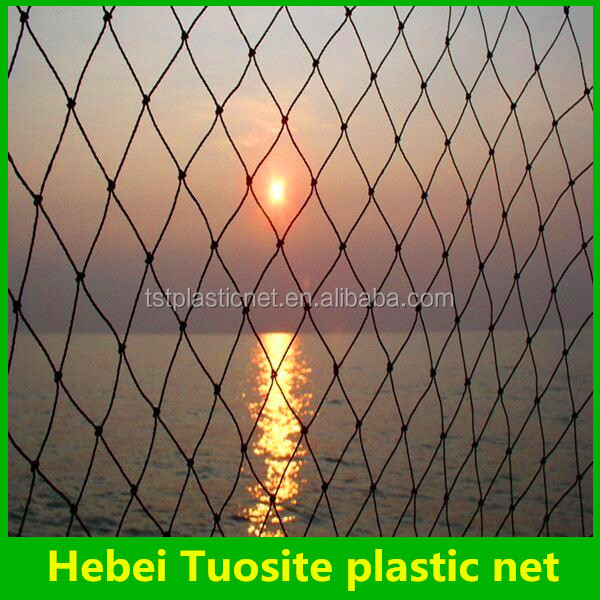 fishing nets nylon prices low