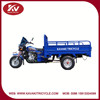Fashion popular blue 200cc air-cooled gas powered tricycle made in China