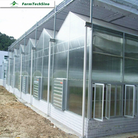 Farmtechsino Multi Span Agricultural Used Commercial