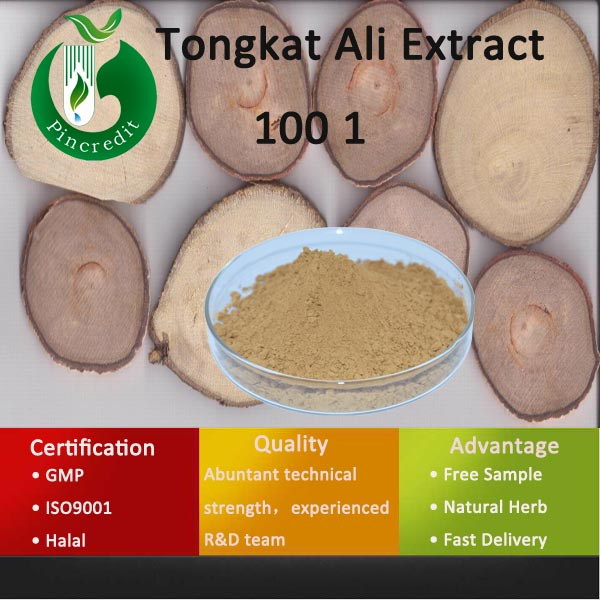 Tongkat Ali Extract Powder/Tongkat Ali Coffee/Tongkat Ali Extract 100 1