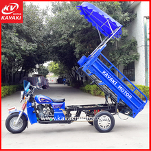 Cheap Adult Delivery Petrol Engine Small Cargo Truck Tricycle With Driver Sunshield