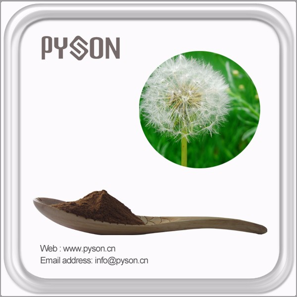 100% Natural dandelion extract
