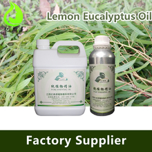 Eucalyptus Citriodora Oil Lemon Eucalyptus Oil For Essence Of Fragrance