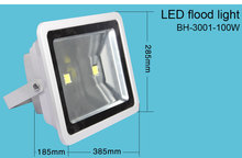 new chinese patented design two cob led food flood light