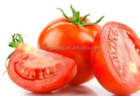 Linong good quality vegetable seeds f1 tomato