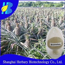 100% Pure nature plant extract bromelain enzyme