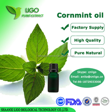 100% Natural Peppermint Oil bulk prices