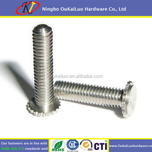 Galvanized steel Self clinching rivet screw