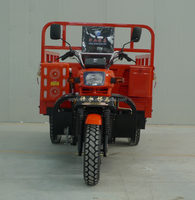 Hot selling 250cc heavy loading cargo motor tricycle for adult from Chongqing