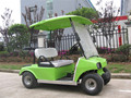 2 seater mini golf cart electric with CE certificate