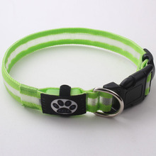 Best quality protective fluorescent dog collars pet product factory supply