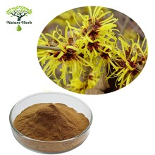 High quality 20:1 Witch hazel extract powder for antioxidation