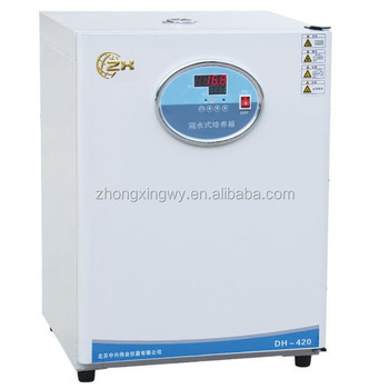 Max temperature 65C! Laboratory thermostatic incubator with CE