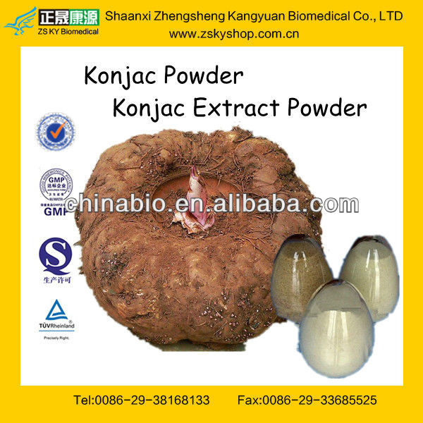 Natural Konjac Root Extract Powder with High Quality