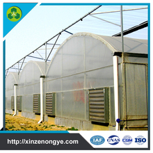 hot dipped galvanized film agricultural greenhouse