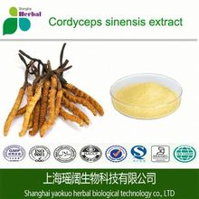Powder form chinese Cordyceps Sinensis/Worm Grass Extract