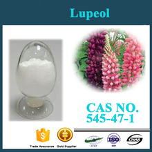 100% Natural Herbal lupine Extract /Lupinus P.E with Lupeol 0.2% CAS NO. :545-47-1