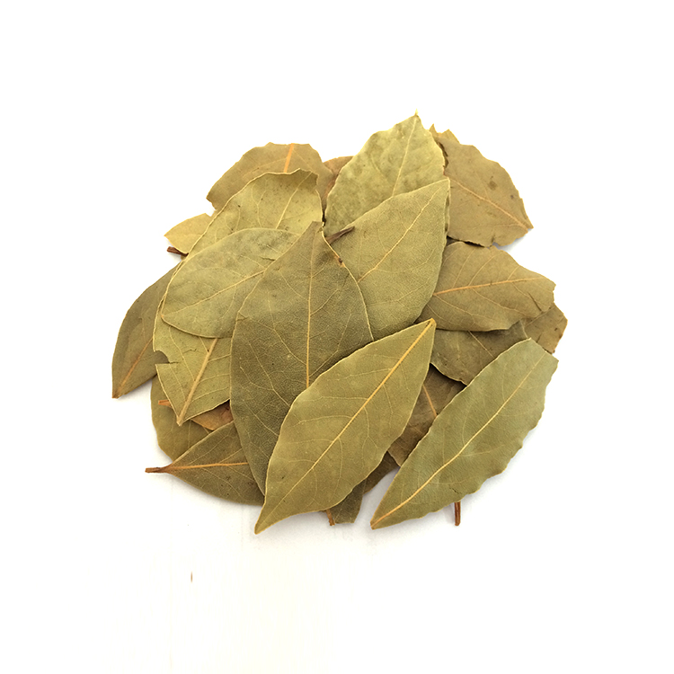 High Quality Natural Spices Bay Leaf Myrcia