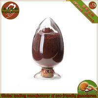 high quality ganoderma reishi extract triterpene