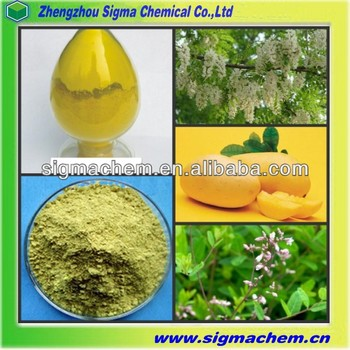 High Purity 98% Herbal Extract Quercetin