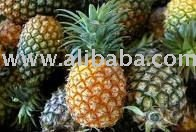 Fresh Pineapple DALL0000065