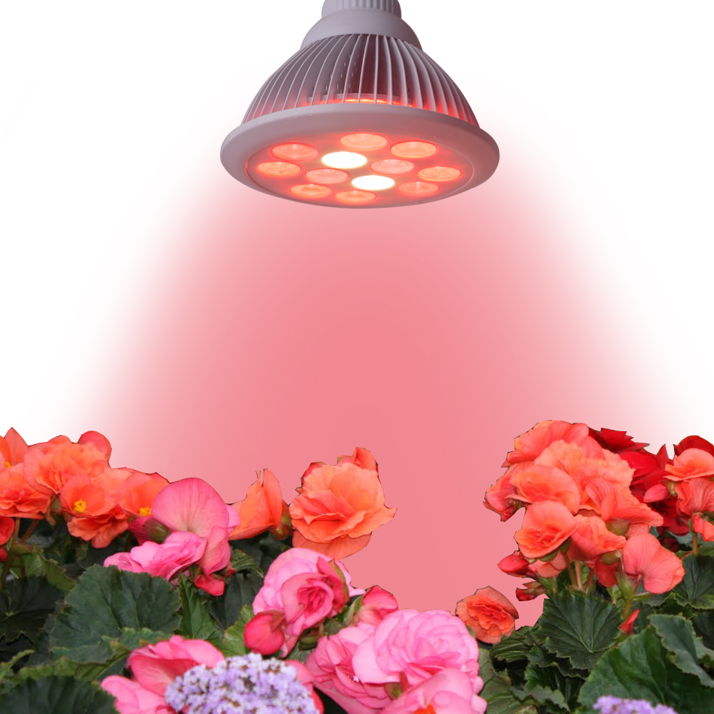 High Quality 36W E27 LED Plant Grow Light for Supplementary Lighting