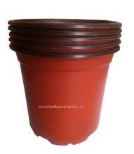 15cm Plastic flower pot thermoforming pot