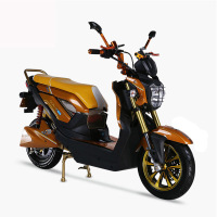 Powerful Cheap Adult Electric Motorcycle