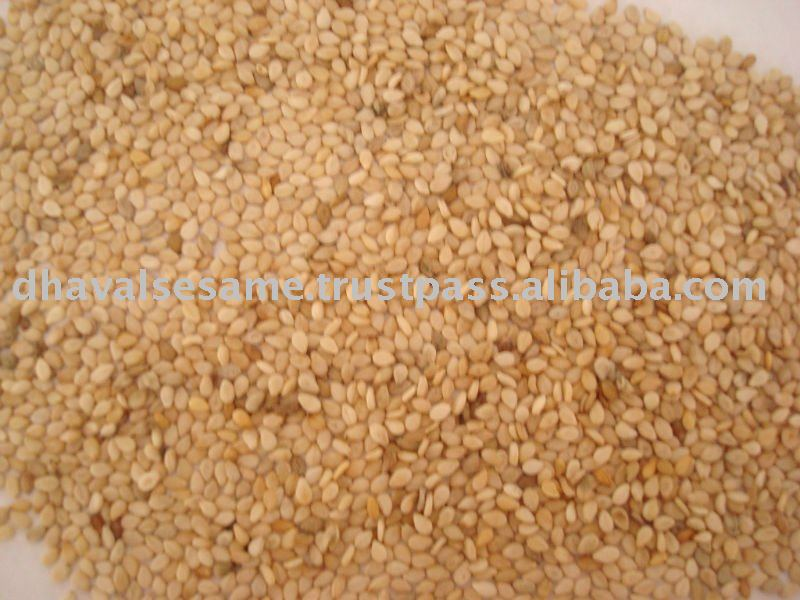 Sesame Seed from India