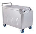 new product and High pressure two guns Powerful Electric Steam Car washing Machine
