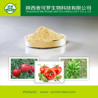 Ningnanmycin wettable powder