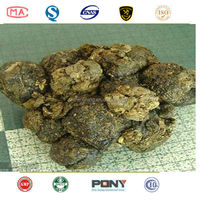 favourable price brazilian green propolis bee propolis
