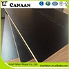 17mm 1200*1800 F17 structural film faced plywood to Australia