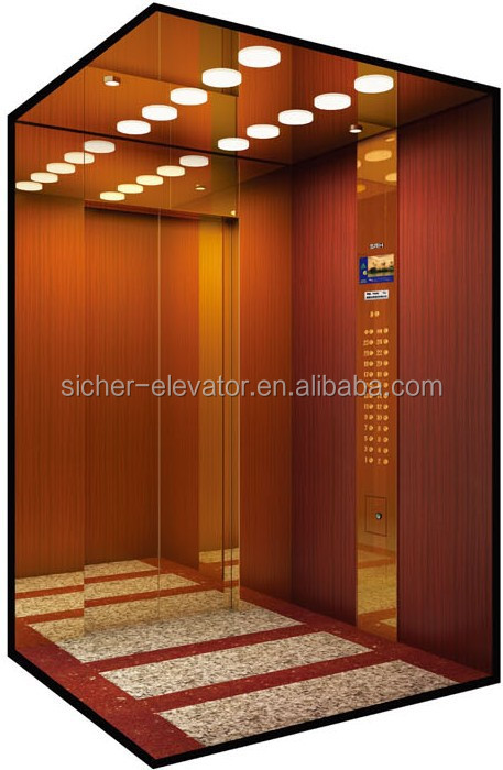 Alibaba 3 Hot Product Gold China Suppliers SRH Home Size Elevator